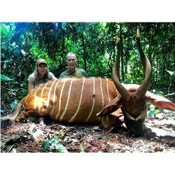 MAYO OLDIRI: 14-Day Bongo and/or Sitatunga Safari for One Hunter and One Non-Hunter in the Cameroon