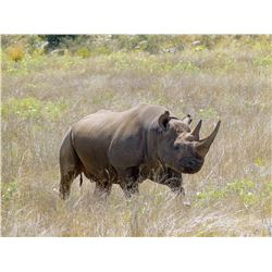 AFRICAN FIELD: 5-Day Black Rhino Vita Dart Hunt for One Hunter and One Non-Hunter in Eastern Cape Pr