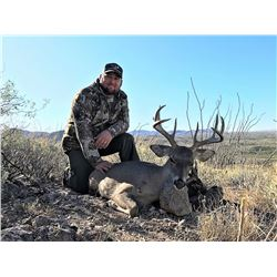 DIAMOND OUTFITTERS: 5-Day Coues Whitetail Deer and Mountain Lion Hunt for Four Hunters in Arizona -
