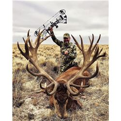 ALGAR SAFARIS: 5-Day Gold Medal Red Stag Hunt for Four Hunters in Argentina - Includes Trophy Fees