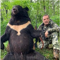HUNT EUROPE: 6-Day Asian (White Lipped) Black Bear Hunt for One Hunter in Russia - Includes Trophy F
