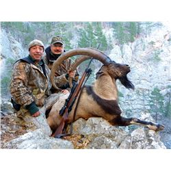 TURKISH FRONTIER: 5-Day Bezoar Ibex Hunt for One Hunter in Turkey - Includes Trophy Fee