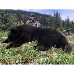 BIG TIME HUNTS: 6-Day Black Bear Hunt for One Hunter in B.C., Canada - Includes Any Size Bear
