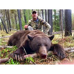 LINEHAN OUTFITTING CO: 5-Day/6-Night Spring Bear Hunt for Two Hunters in Montana
