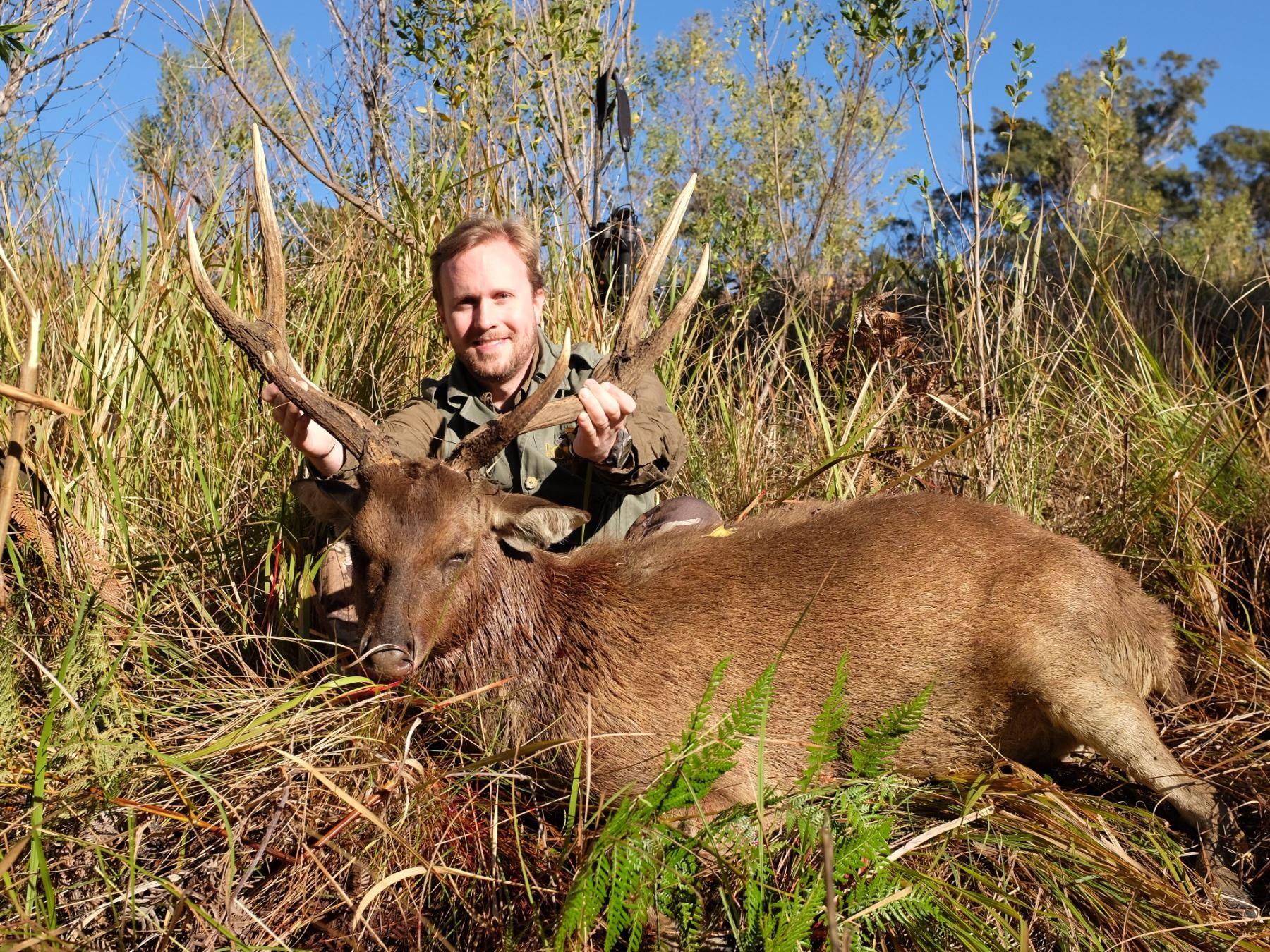 KINGHAM SAFARIS AUSTRALIA: 3-Day Moluccan Rusa Hunt for One Hunter in Australia - Includes Trophy Fe