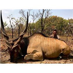 GANAM ADVT: 12-Day Lord Derby Eland, Roan OR Western Savanna Buffalo Hunt for One Hunter in Cameroon