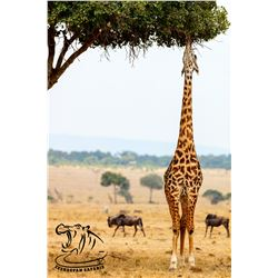 4-DAY/3-NIGHT AFRICAN PHOTOGRAPHIC SAFARI FOR 4 GUESTS IN KWAZULU-NATAL, SOUTH AFRICA