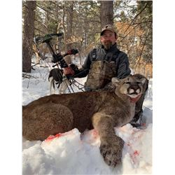 5-DAY LION HUNT IN NEW MEXICO FOR 1 HUNTER AND 1 NON-HUNTER