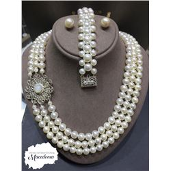 THE PEARLS OF ORHID