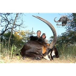 7 - DAY SABLE HUNT FOR 1 HUNTER AND 1 NON-HUNTER IN SOUTH AFRICA