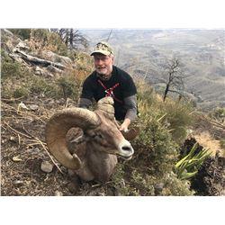 10-DAY LA PALMOSA DESERT SHEEP HUNT FOR 1 HUNTER AND 2 NON-HUNTERS
