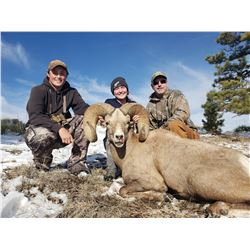 Nebraska Game and Parks Commission Bighorn Sheep Permit