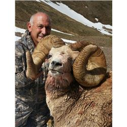 TAOS PUEBLO ROCKY MOUNTAIN BIGHORN SHEEP PERMIT- MOUNTAIN HUNT