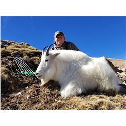 COLORADO ROCKY MOUNTAIN GOAT LICENSE