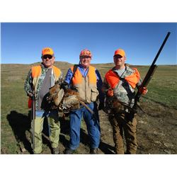 3-DAY PHEASANT AND UPLAND GAME BIRD HUNT FOR 1 HUNTER (Wild birds no release)