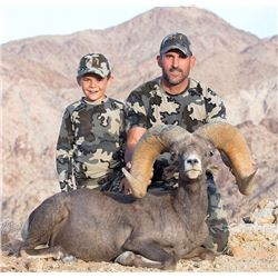 CALIFORNIA DESERT BIGHORN SHEEP (Open-Zone Tag)