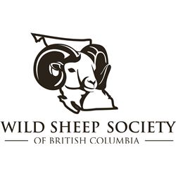 WILD SHEEP SOCIETY OF BRITISH COLUMBIA - LIFETIME MEMBERSHIP