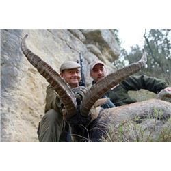 WED-02 Beceite Ibex Hunt for TWO Hunters, Spain
