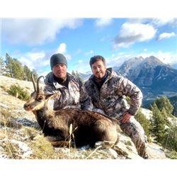 WED-05 Hunt in Spain