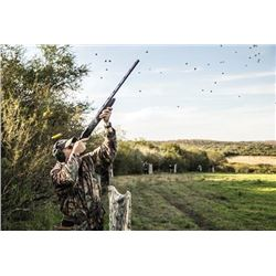 WED-13 Dove Hunt for Two Hunters, Uruguay