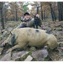 WED-21 Wild Boar Hunt, Oklahoma
