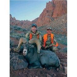 TH-01 Desert Sheep (Nelsoni) Tag, Navajo Nation