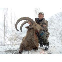 TH-08 Himalayan Ibex Hunt, Pakistan