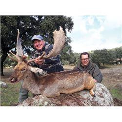 TH-09 Red Deer, Mouflon, or Fallow Deer Hunt (Hunter's Choice), Spain