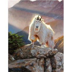 """TH-25 """"Sunny Disposition"""" Original Oil Painting by Dallen Lambson"""