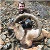 FR-02 Coastal (Bezoar) Ibex Hunt, Turkey