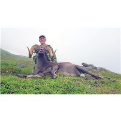 FR-13 Kamchatka Snow Sheep Hunt, Russia