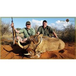 FR-48 Plains Game Hunt for TWO Hunters, South Africa
