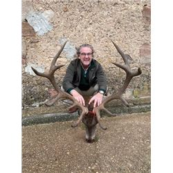 SA-26 Red Stag Hunt, Spain