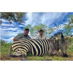 TH-38B Impala / Zebra / Warthog for Two Hunters, South Africa