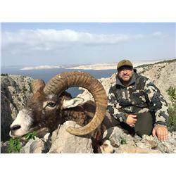 SAFARI INTERNATIONAL MACEDONIA: 5 Day European Mouflon Hunt for 1 Hunter and 1 Non-Hunter in Biblica