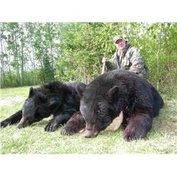 NORTH ALBERTA OUTFITTERS: 6 Day Black Bear Hunt for 2 Bears in Beautiful Canada!