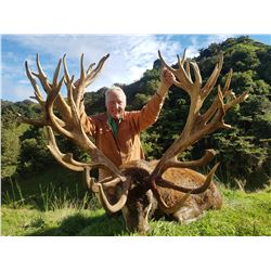 WANGANUI SAFARIS LTD: 5 Day Hunt for 2 Hunters to Pursue 1 Red Stag Each up to 320 SCI with 2 Observ