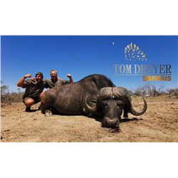 TOM DREYER SAFARIS: 6 Day/7 Night Buffalo Hunt for 1-Hunter in Mpumalanga
