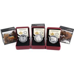 2015 Canada $20 Grizzly Bear - Togetherness, Family, The Catch Fine Silver Coin Set (TAX Exempt). 3p