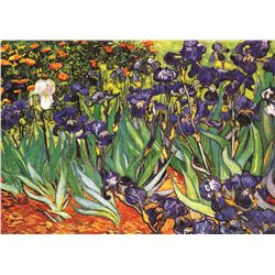 Garden Of Irises, By Vincent Van Gogh