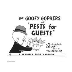 Warner Brothers Hologram Goofy Gophers