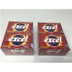 Excel Cinnamon Gum (2 x 12 x 12)