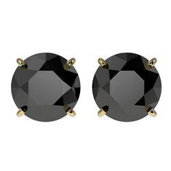 3 ctw Fancy Black Diamond Solitaire Stud Earrings 10k Yellow Gold