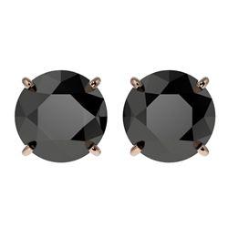 3.50 ctw Fancy Black Diamond Solitaire Stud Earrings 10k Rose Gold