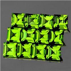Natural Green Peridot 12 Pcs {Flawless-VVS1}