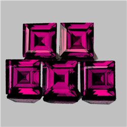 Natural Raspberry Pink Purple Rhodolite Garnet - FL