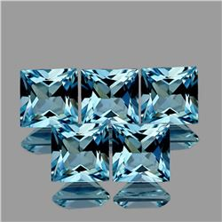 Natural Santa Maria Blue Aquamarine [Flawless-VVS]