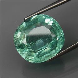 Natural BIG Aquamarine Brazil 12.32 Ct