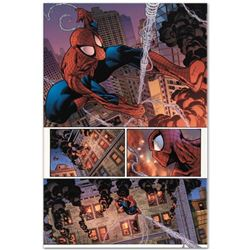"""Marvel Comics """"The Amazing Spider-Man #596"""" Numbered Limited Edition Giclee on Canvas by Paulo Sique"""