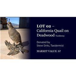 California Quail on deadwood